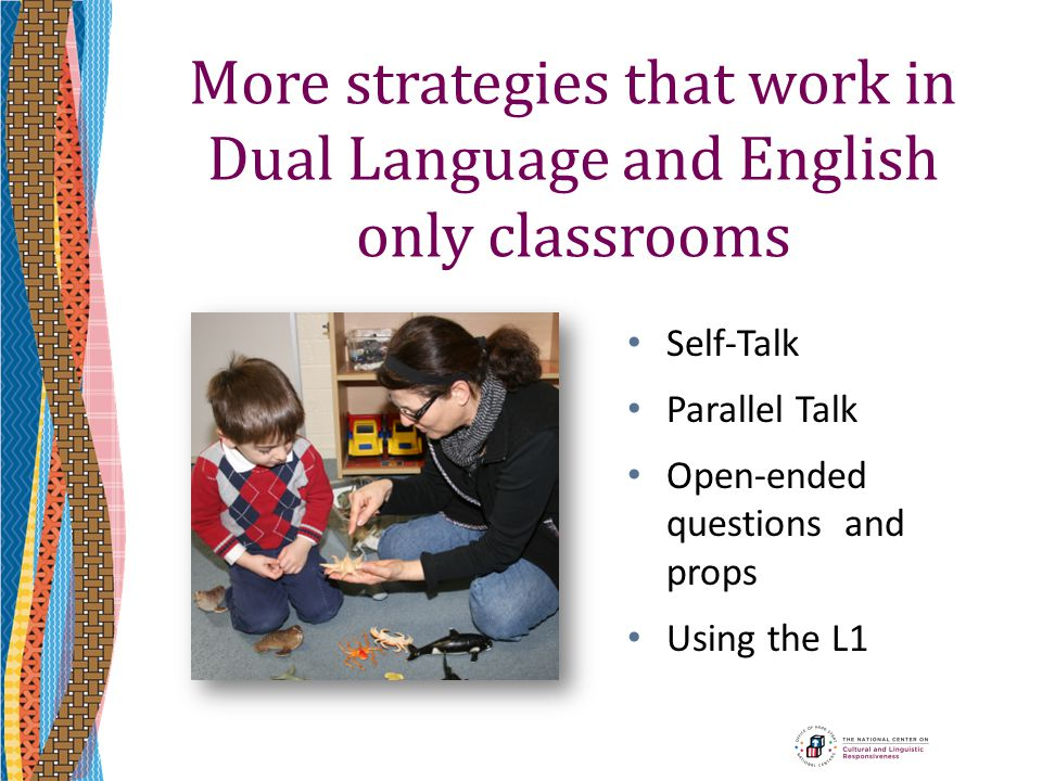 More strategies that work in Dual Language and English only classrooms