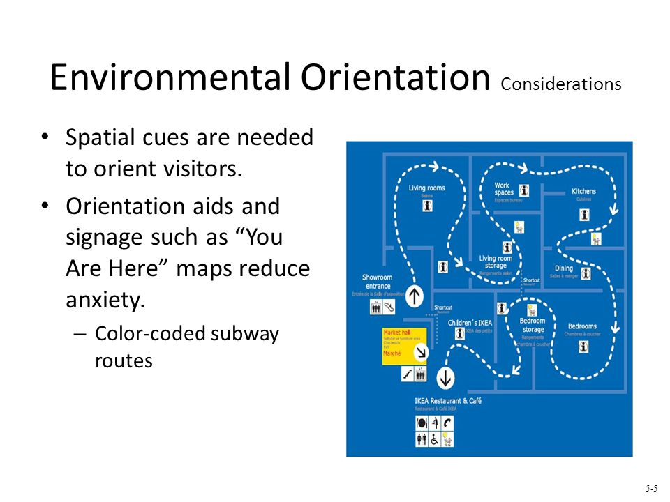 Environmental Orientation Considerations