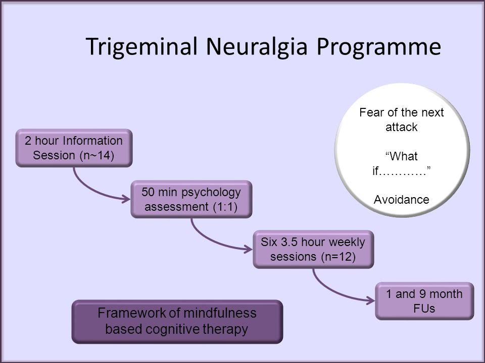 Trigeminal Neuralgia Programme