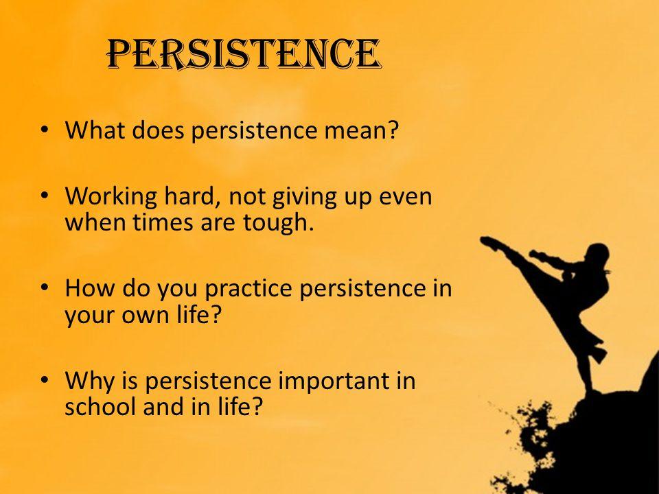 Persistence Persistence What does persistence mean