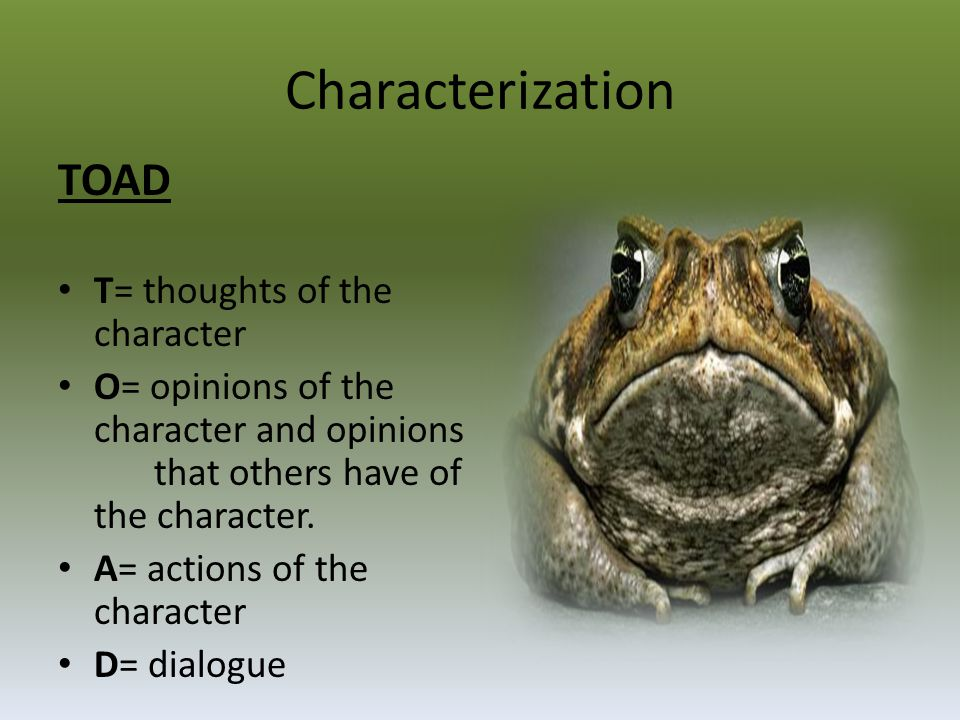 Characterization TOAD T= thoughts of the character
