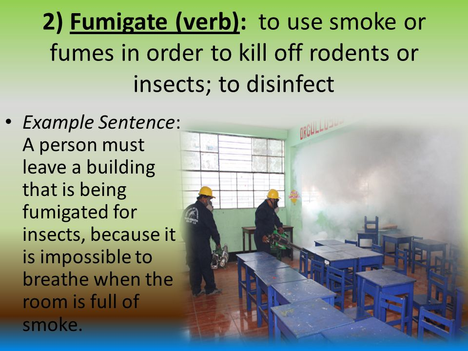 2) Fumigate (verb): to use smoke or fumes in order to kill off rodents or insects; to disinfect