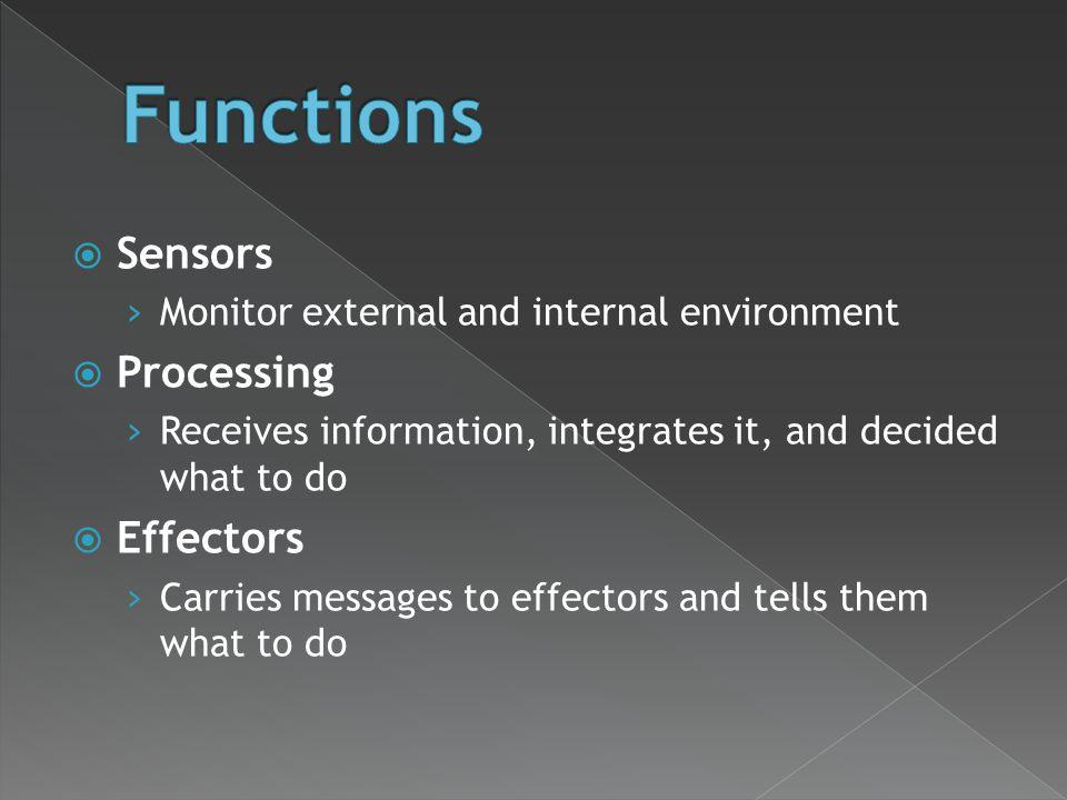 Functions Sensors Processing Effectors