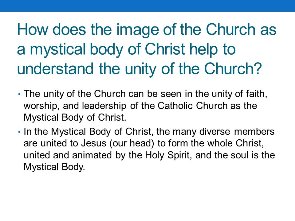 How does the image of the Church as a mystical body of Christ help to understand the unity of the Church