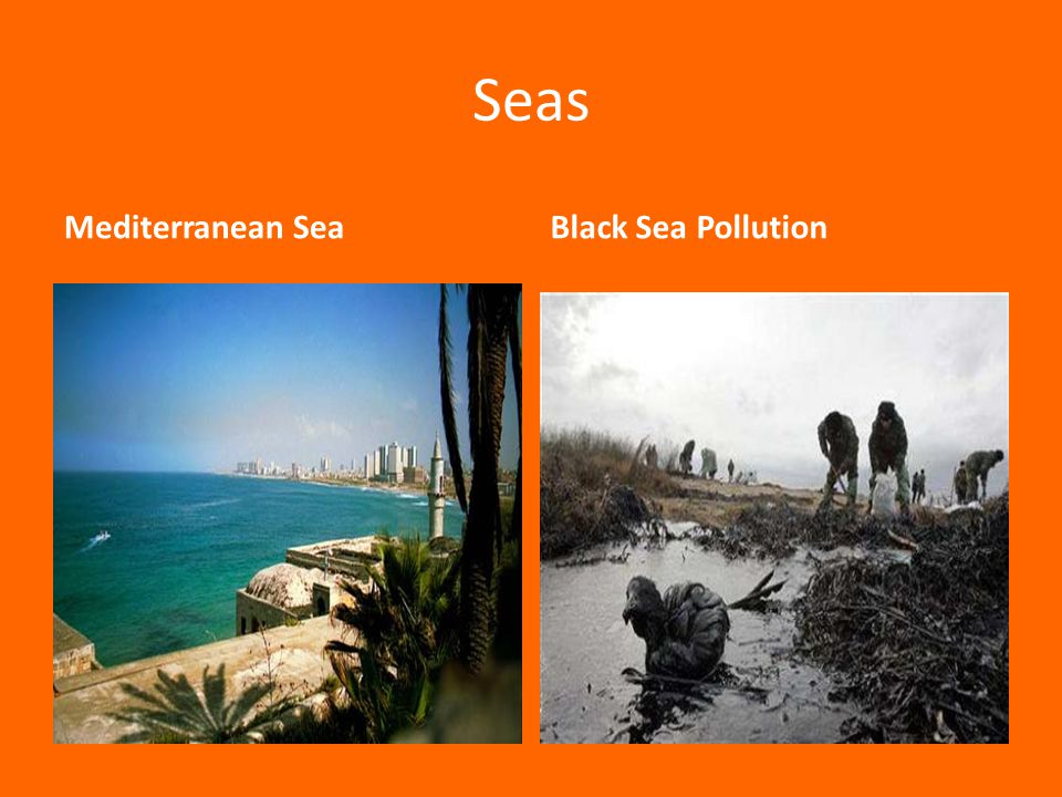 Seas Mediterranean Sea Black Sea Pollution