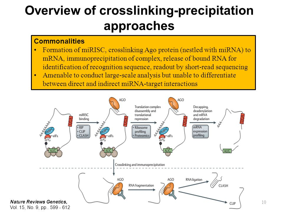Overview of crosslinking-precipitation approaches