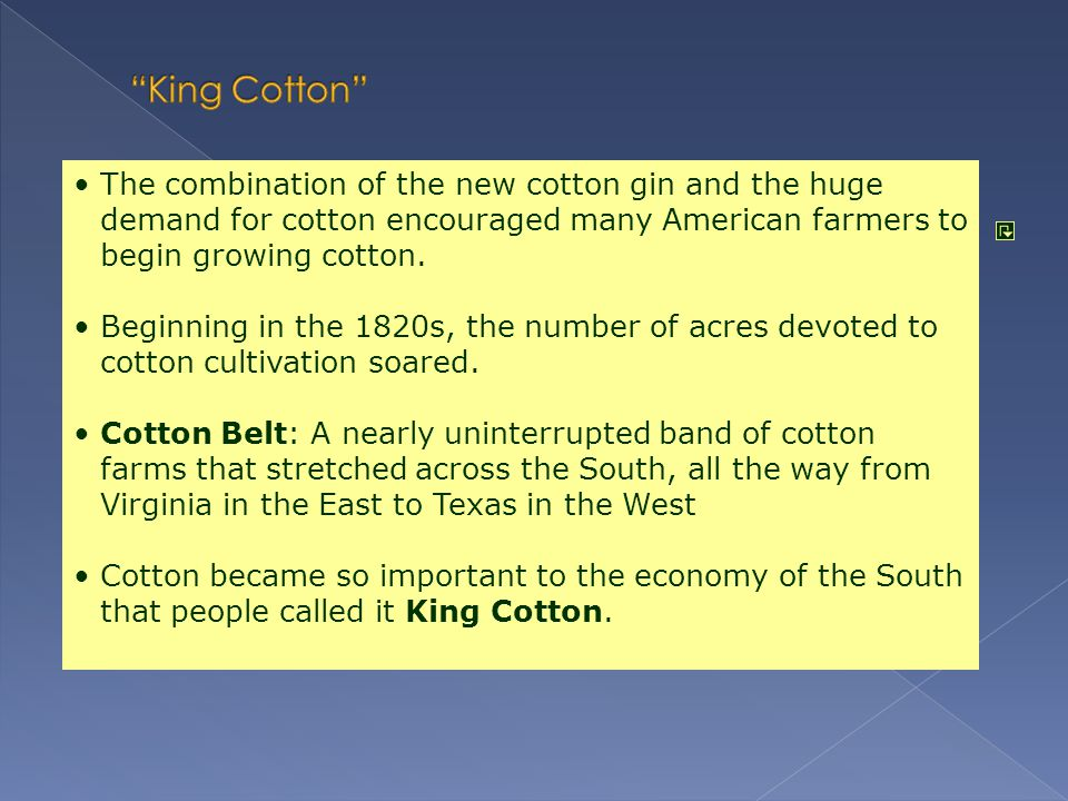 King Cotton The combination of the new cotton gin and the huge demand for cotton encouraged many American farmers to begin growing cotton.