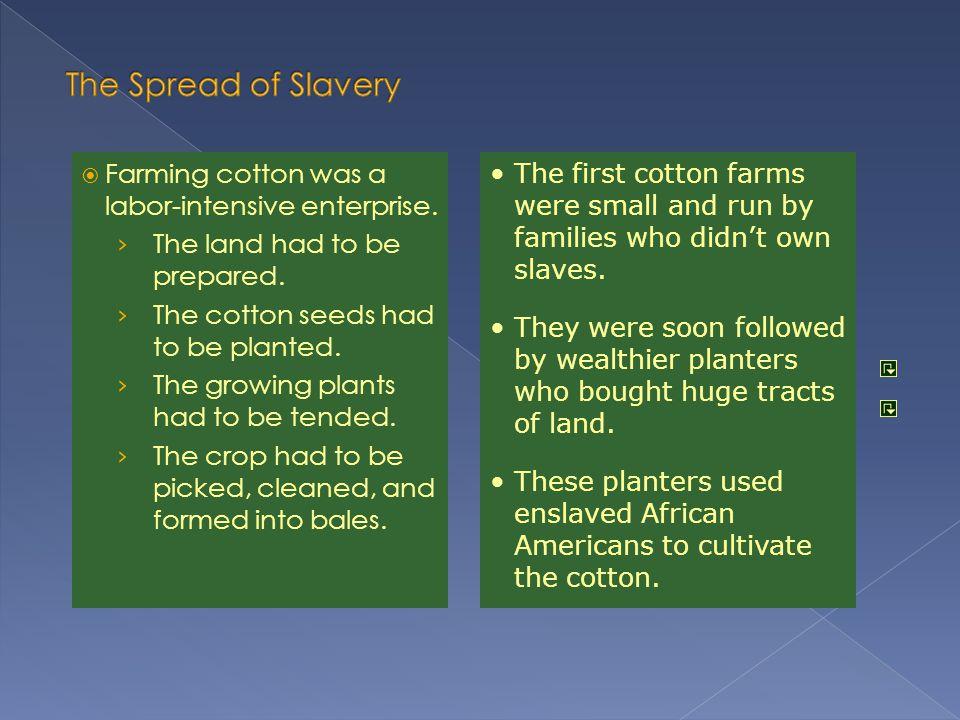 The Spread of Slavery Farming cotton was a labor-intensive enterprise.