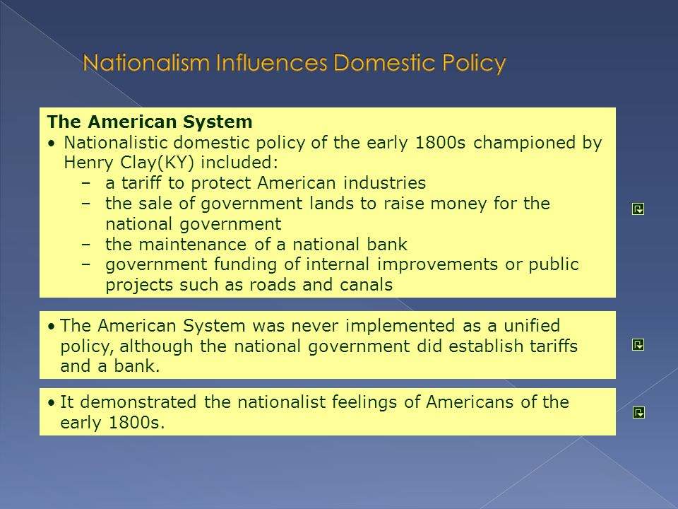 Nationalism Influences Domestic Policy