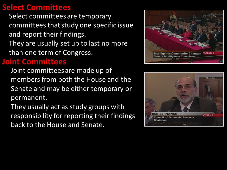Select Committees Joint Committees