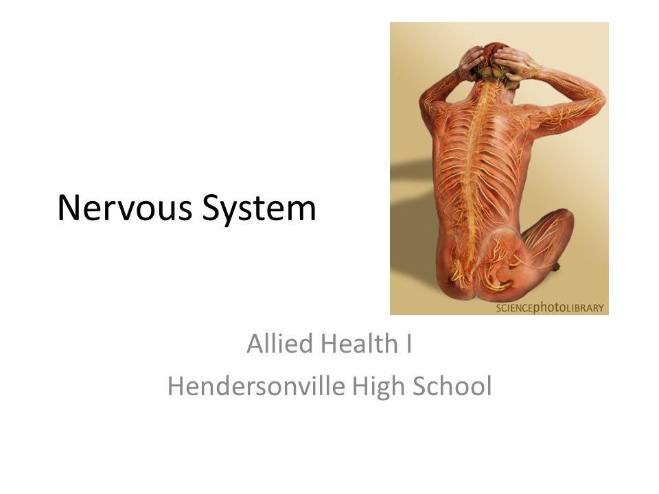 Allied Health I Hendersonville High School