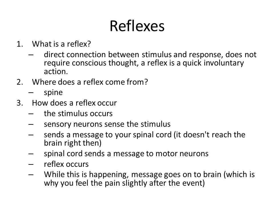 Reflexes What is a reflex