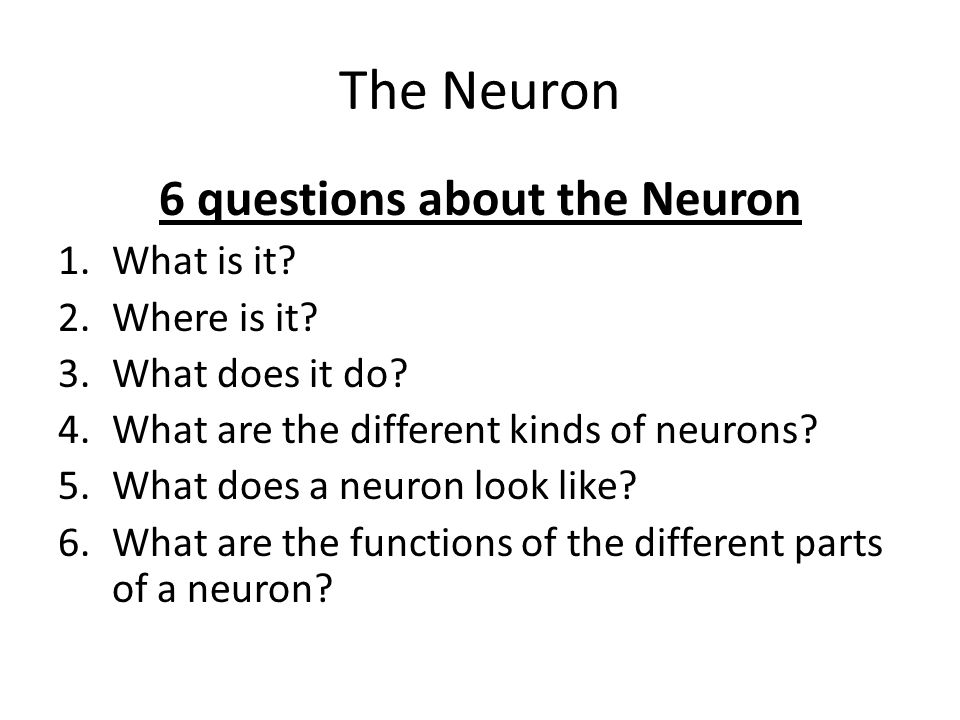 6 questions about the Neuron