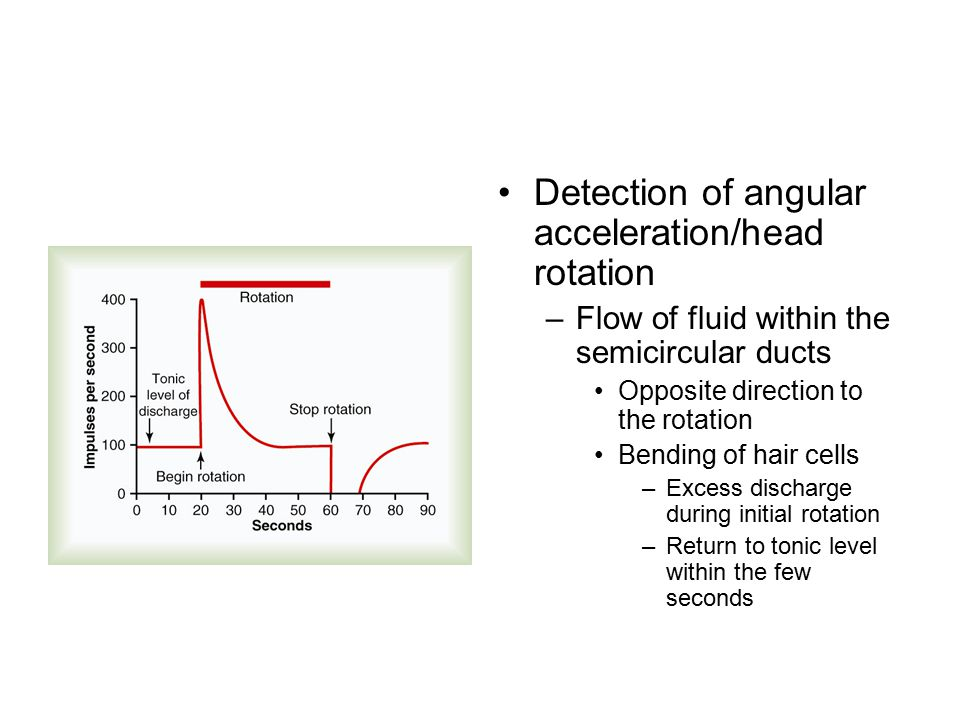 Detection of angular acceleration/head rotation