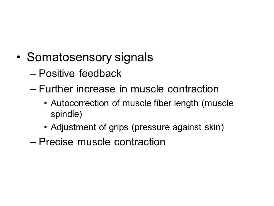 Somatosensory signals