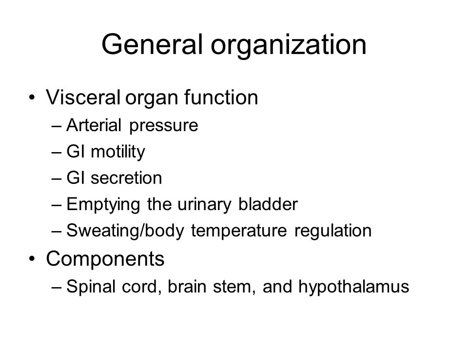 General organization Visceral organ function Components