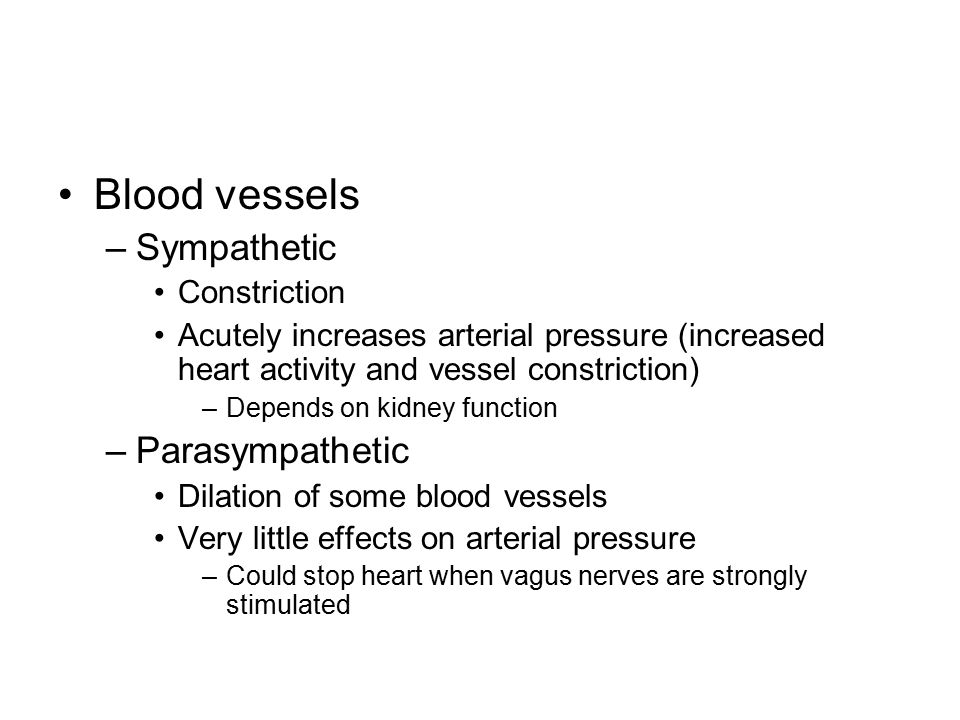 Blood vessels Sympathetic Parasympathetic Constriction