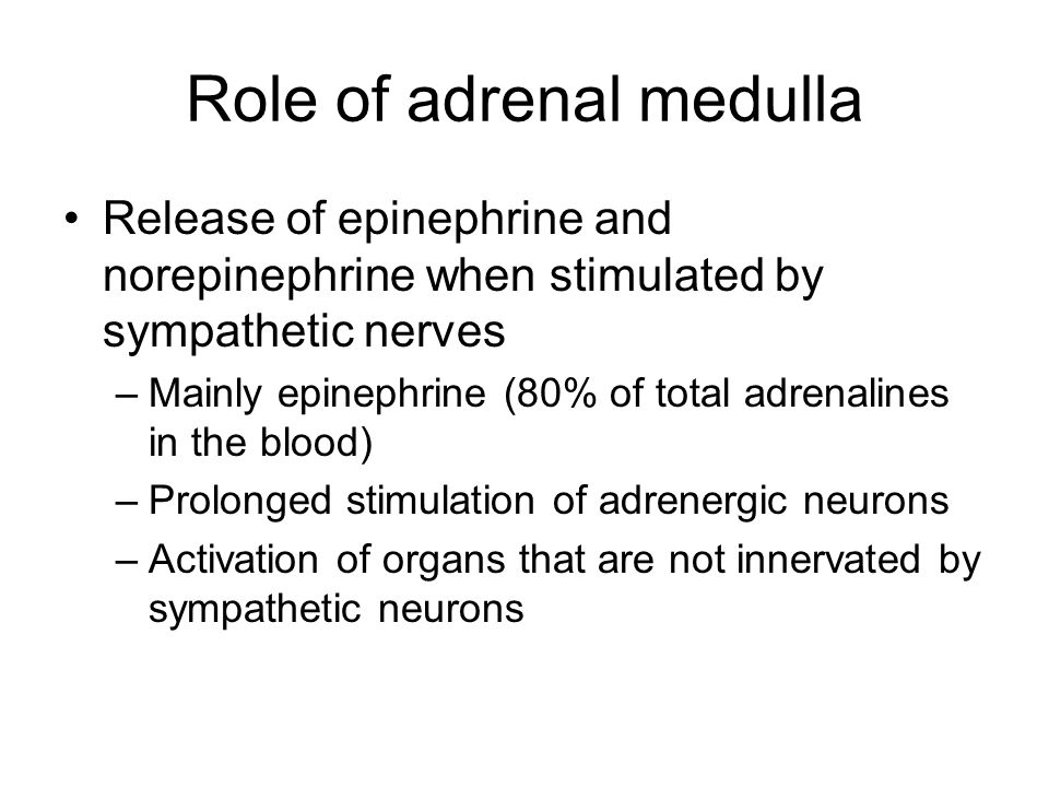Role of adrenal medulla