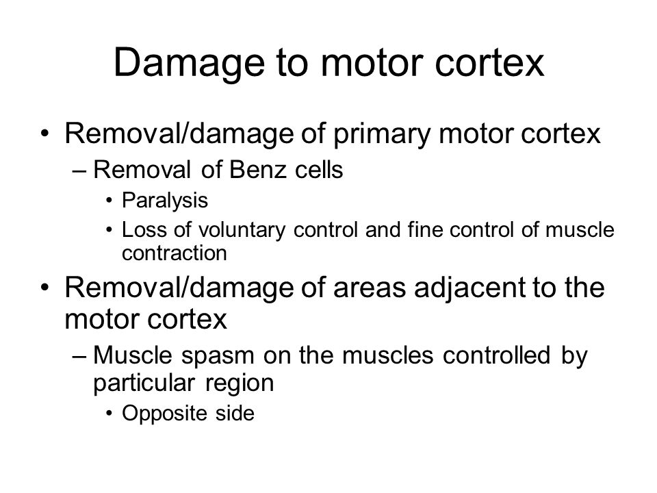Damage to motor cortex Removal/damage of primary motor cortex