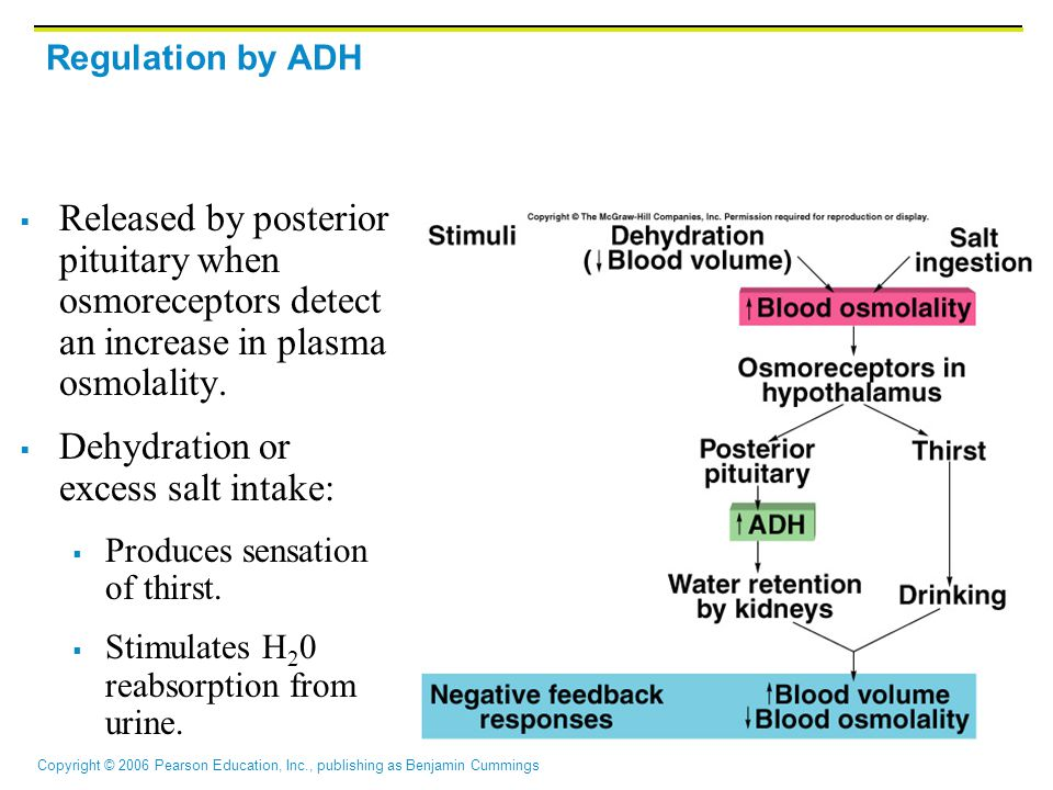 Dehydration or excess salt intake: