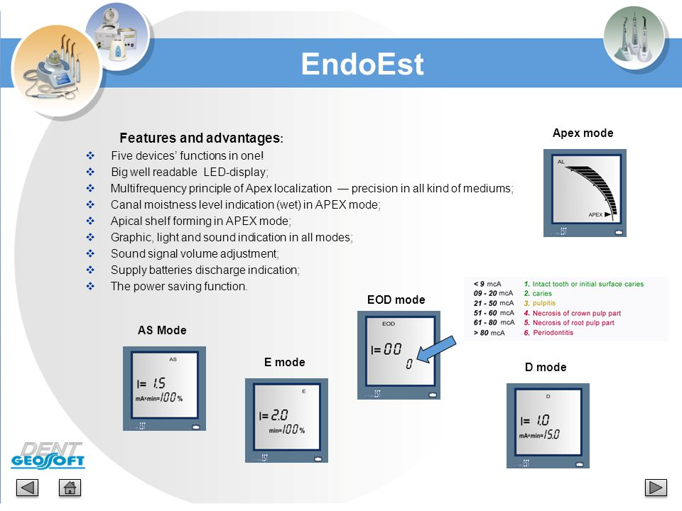 EndoEst Features and advantages: Apex mode