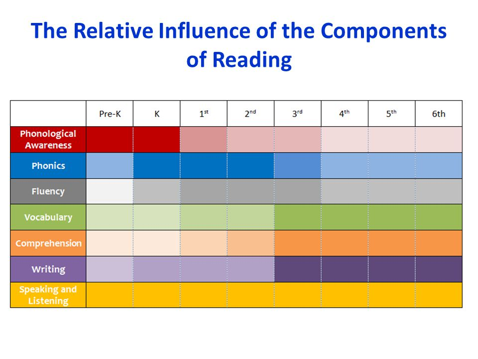 The Relative Influence of the Components of Reading