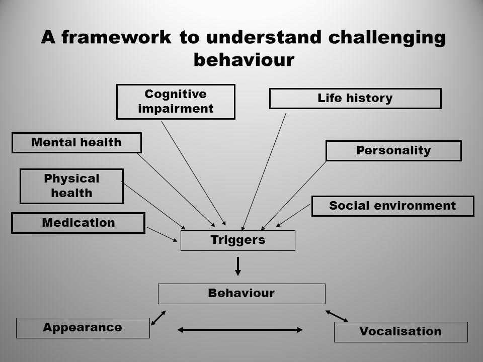 A framework to understand challenging behaviour