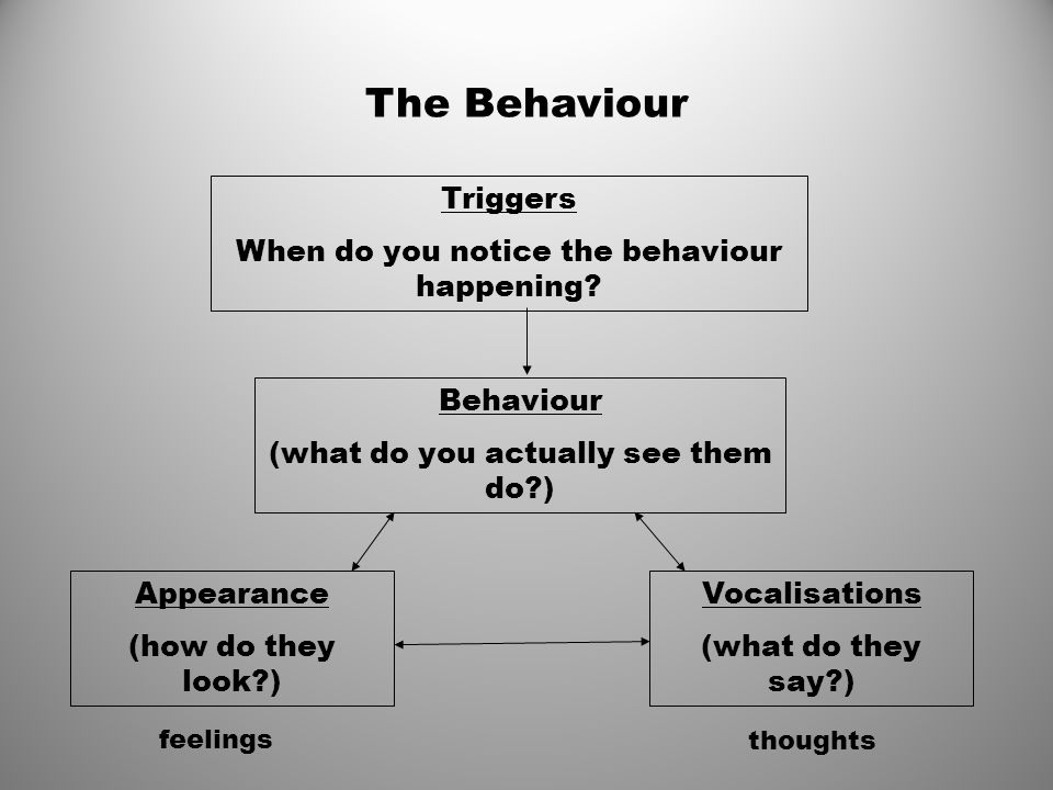 The Behaviour Triggers When do you notice the behaviour happening