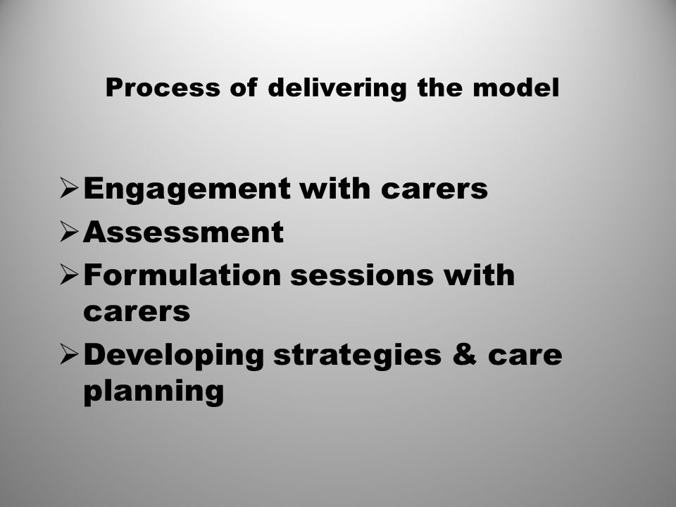 Process of delivering the model