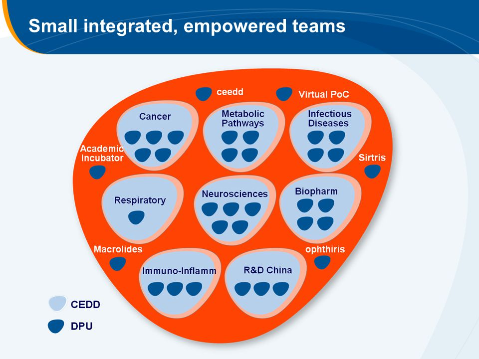 Small integrated, empowered teams