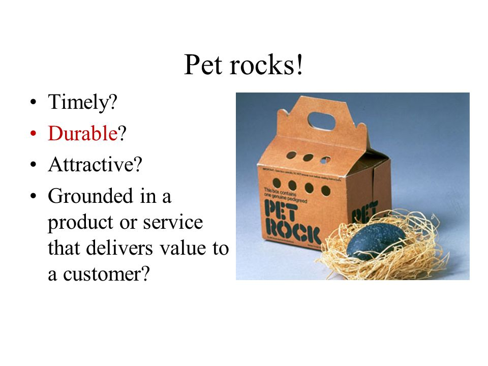 Pet rocks! Timely Durable Attractive