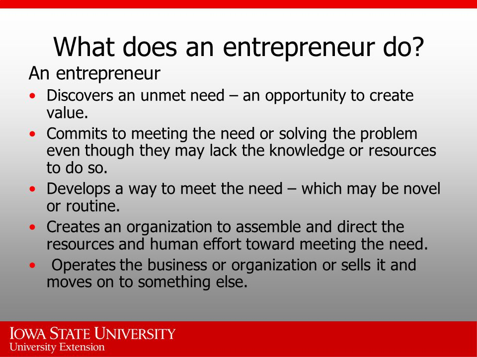 What does an entrepreneur do