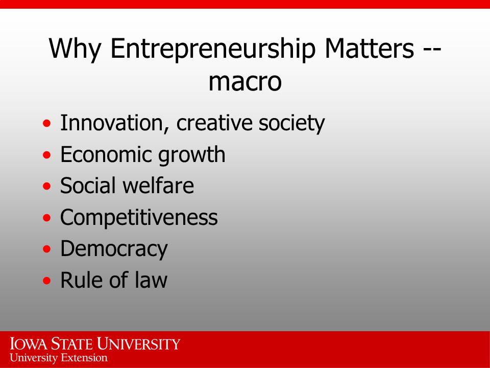 Why Entrepreneurship Matters -- macro