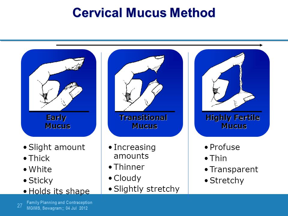 Cervical Mucus Method Slight amount Thick White Sticky Holds its shape