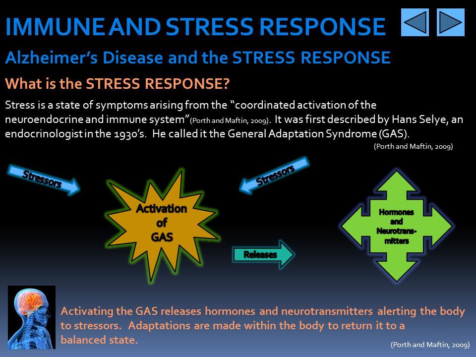 IMMUNE AND STRESS RESPONSE