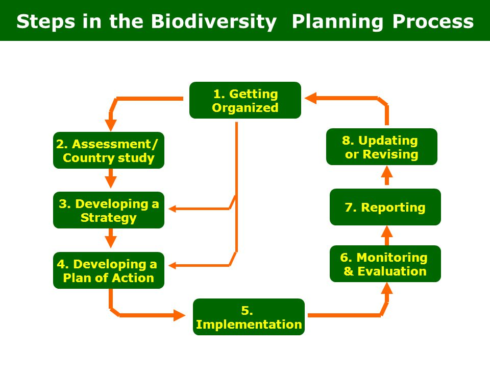 Steps in the Biodiversity Planning Process