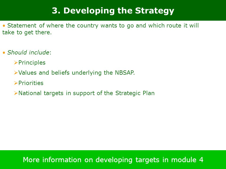 3. Developing the Strategy