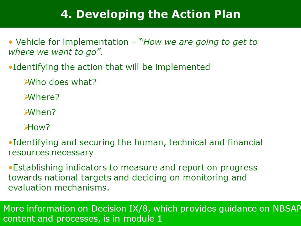 4. Developing the Action Plan