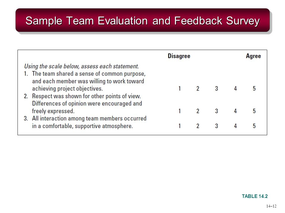 Sample Team Evaluation and Feedback Survey