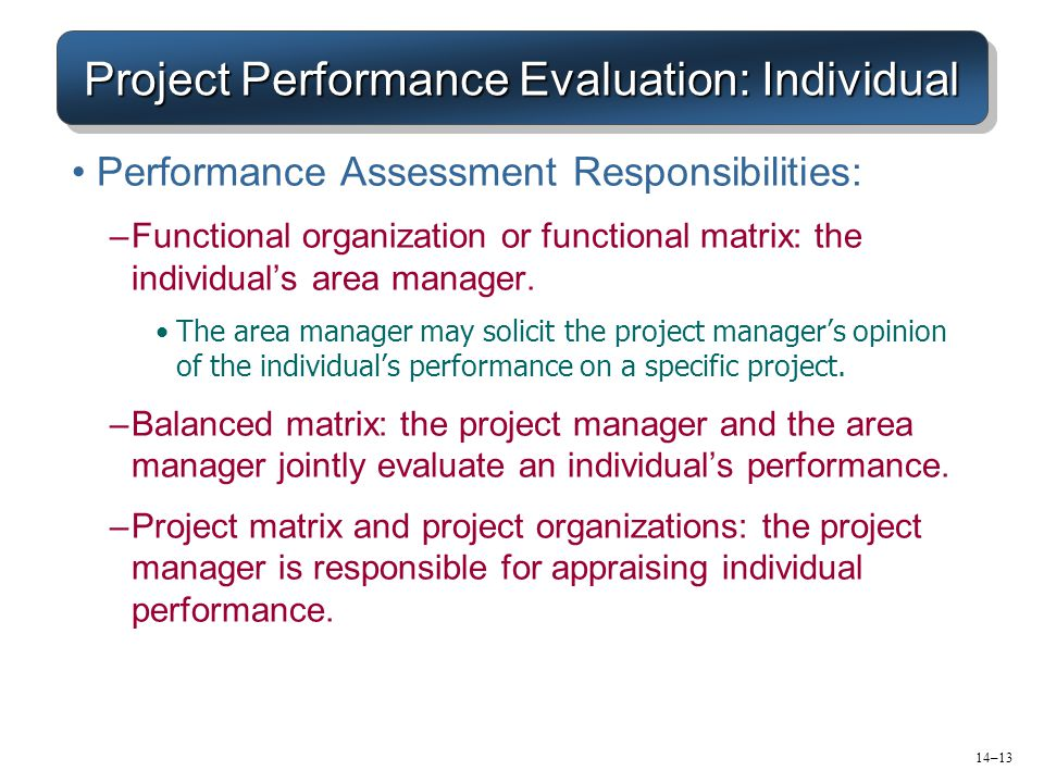 Project Performance Evaluation: Individual
