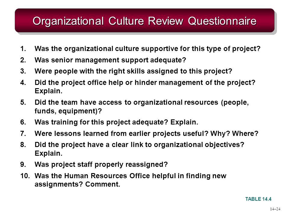 Organizational Culture Review Questionnaire