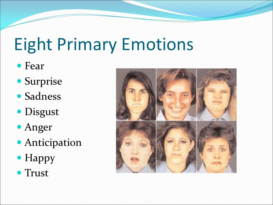 Eight Primary Emotions