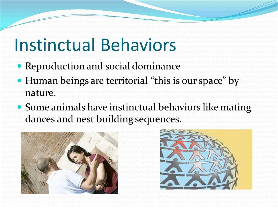 Instinctual Behaviors