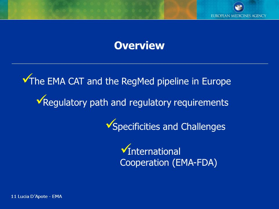 Overview The EMA CAT and the RegMed pipeline in Europe