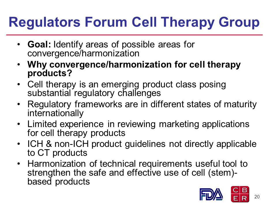 Regulators Forum Cell Therapy Group