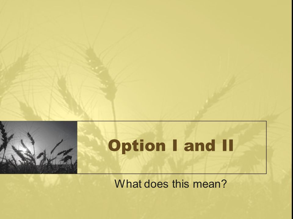 Option I and II What does this mean