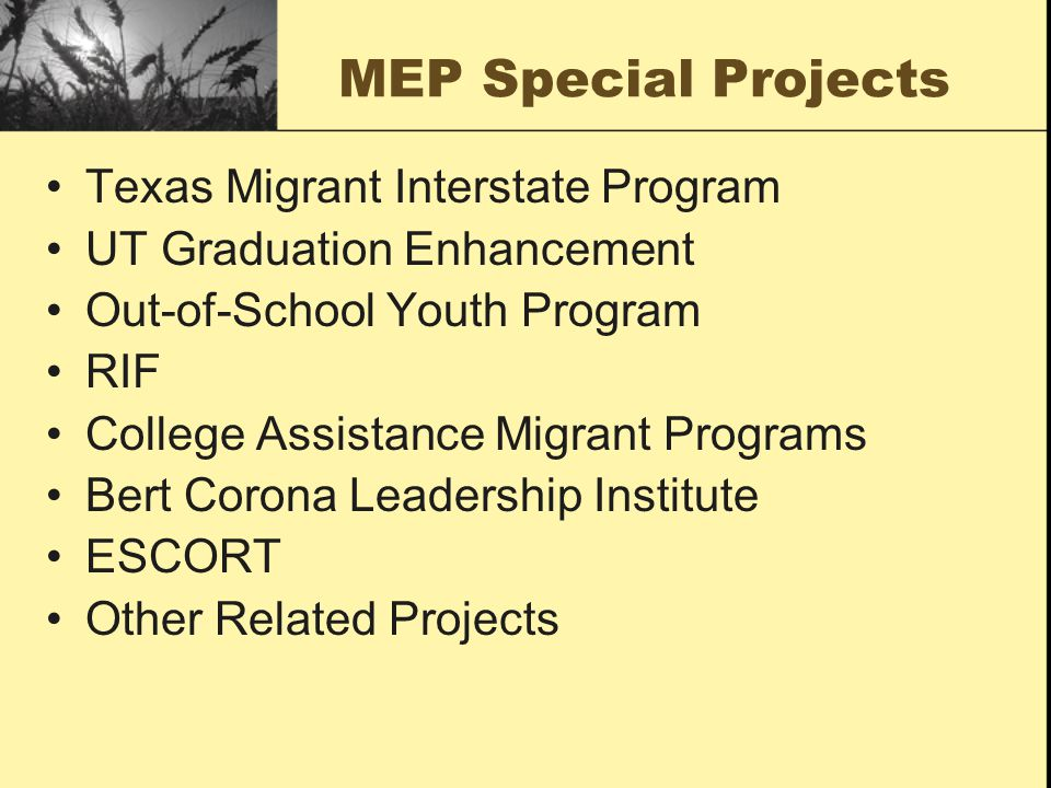 MEP Special Projects Texas Migrant Interstate Program