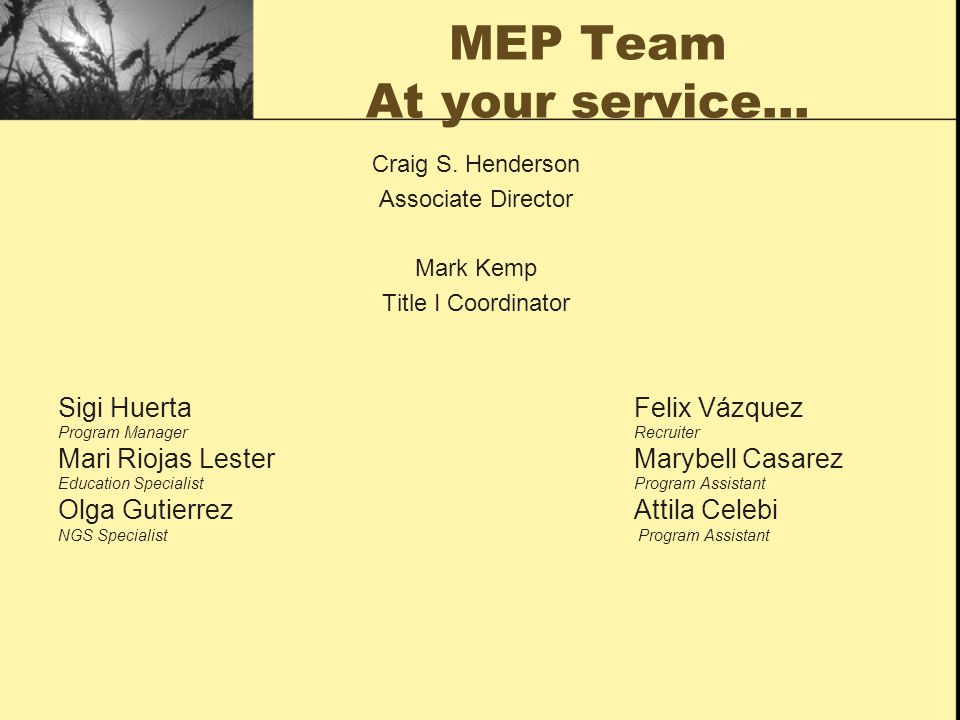 MEP Team At your service…