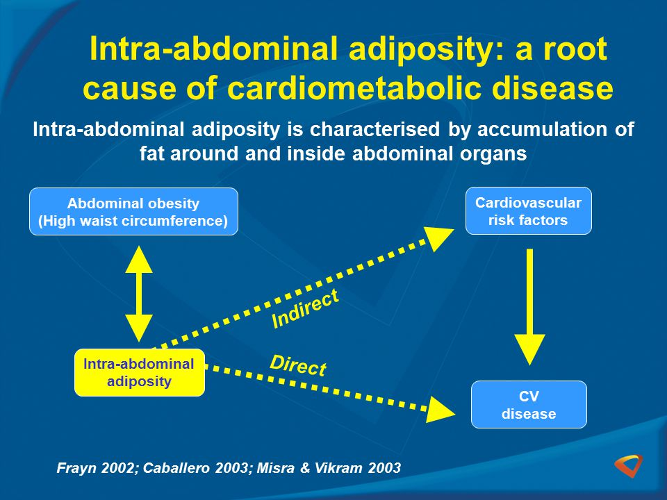 Intra-abdominal adiposity: a root cause of cardiometabolic disease