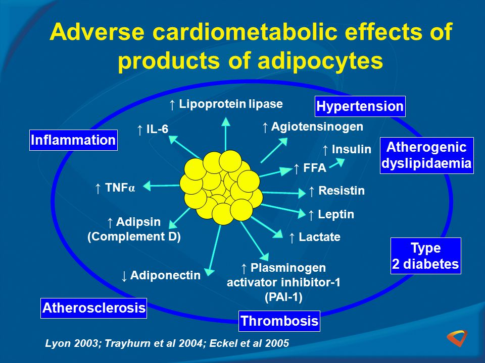 Adverse cardiometabolic effects of products of adipocytes